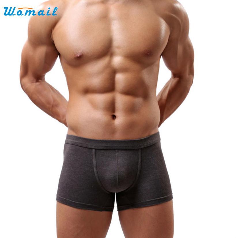70105 Elegant Nobility Men Sexy Underwear Men's Boxer Shorts 5Colors xl-2xl Free Shipping