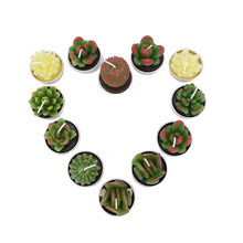 2019 New 12pcs/set Aromatherapy Craft Candles Simulation Succulent Cactus Lovely Plants Candles Smokeless Valentine's Gift(China)