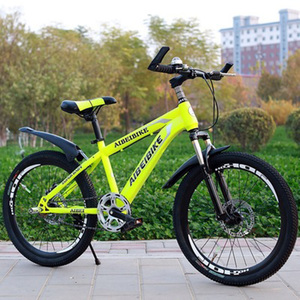 Adult Mountain Bike Single Speed Double Disc Brake Shock Absorber Student Mountain Bike 26 Inches