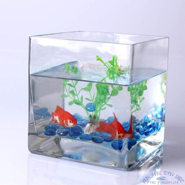 Resultado de imagem para aquario pequeno decorado