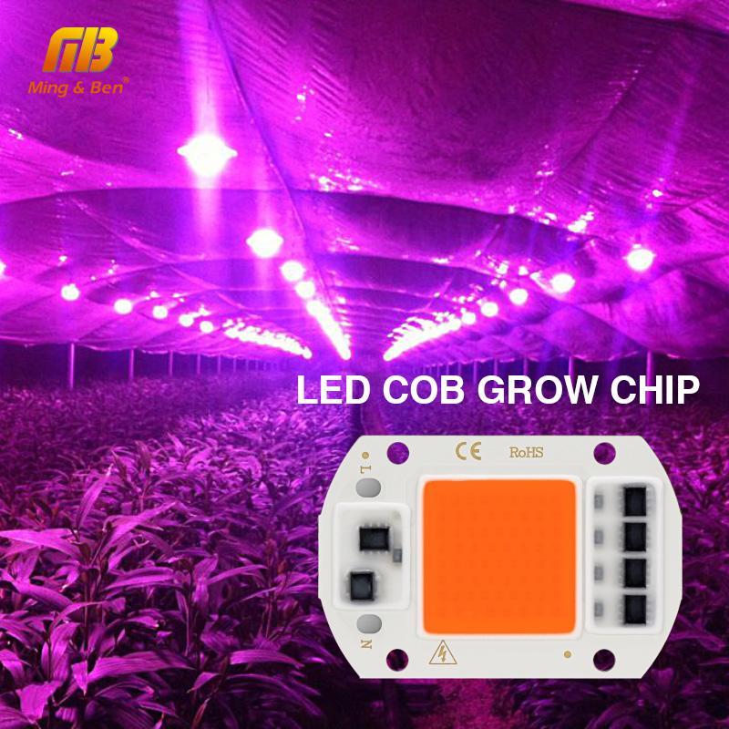 Full Spectrum LED Grow COB Chip Phyto Lamp 20W 30W 50W AC 220V Phytolight For Indoor Plant Seedling Grow And Flower Fitolamp
