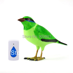Home Wireless Green Bird Remot