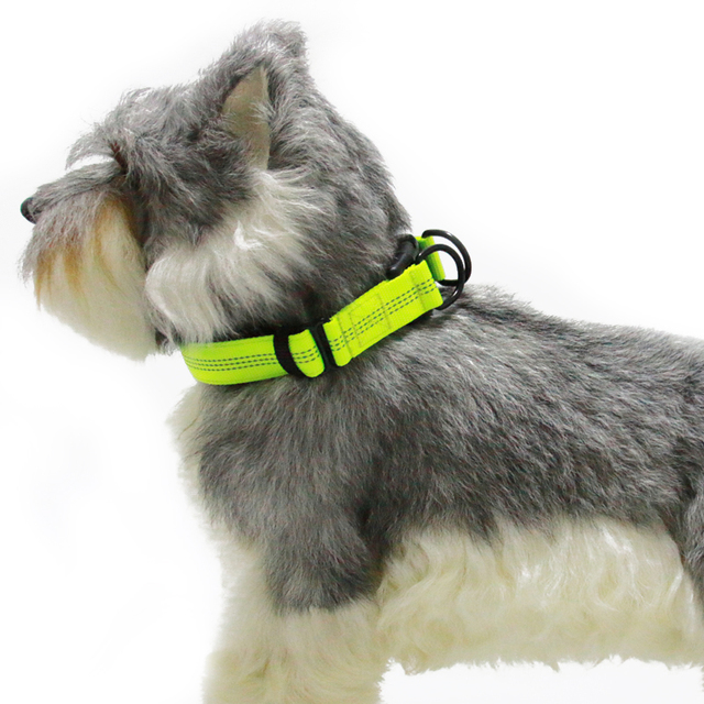 Bright Reflective Nylon Dog Collar Comfort Thick Padded Outdoor Dogs
