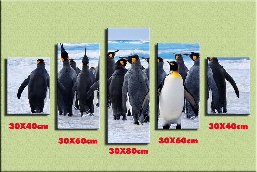 TOP Sale 5 Pieces/set Scenery Cute penguin Wall Art For Wall Decor Home Decoration Picture Paint on Canvas /xt090-XFZ