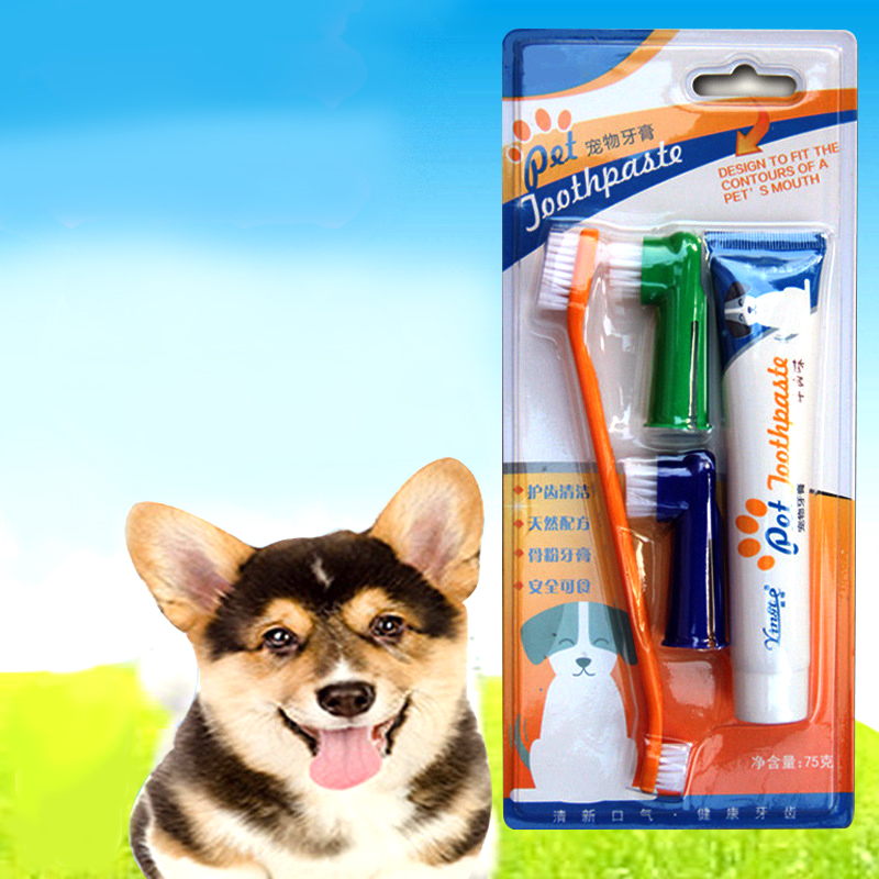 4pcs Dog Care Set Pet Toothbrush For Cats Dog Toothpaste For Pets Oral Cleaning Products Dog Tooth Cleaning Toothbrush Brushes image