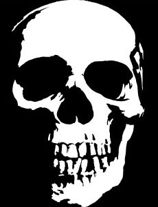 Aliexpresscom  Buy Car Decal Cool Motorcycle Skull Face Cm X - Skull decals for motorcycles