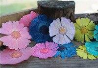 Pink Flower Petal Press Flowers DIY Handmade Material 1 Lot 120pcs Free Shipment Dried Flower