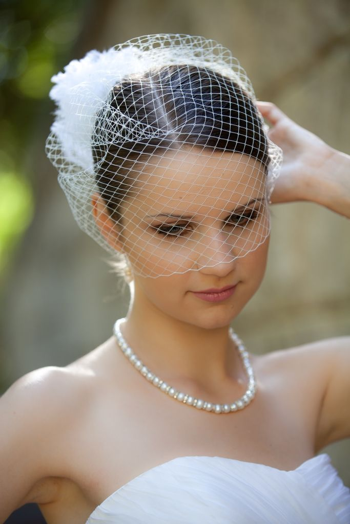 2015 Hot Sale Ivory Blusher Birdcage Face Veil the Champagne Flower With Comb