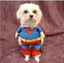Funny Pet Superman Costume For Small Dogs