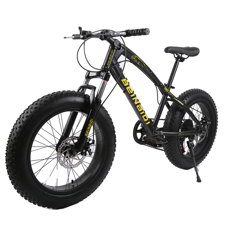 20 Inch Fat Bike / Snow Bike,4.0 Width Wheel,High Carbon Steel Frame,Aluminum Alloy Rim, Hydraumatic Disc Brakes,7 Speed