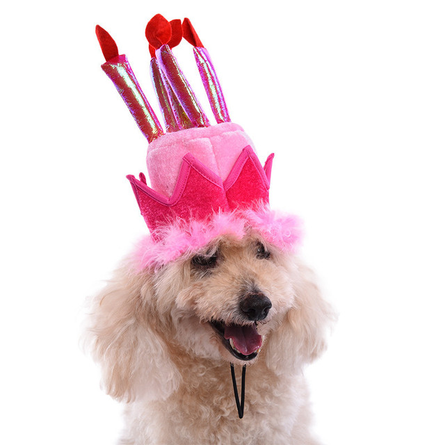 2017 new fashion pet birthday hat dog gifts supplies for puppy