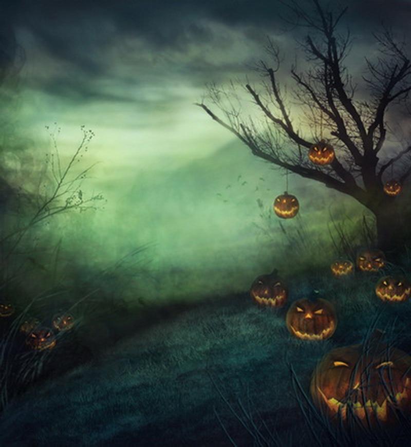 huayi moon night pumpkin photography halloween backdrop d9158 - Halloween Backdrop