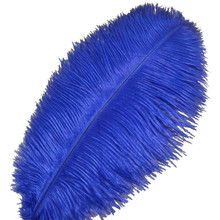 Wholasale Royal Blue Ostrich Feathers for Crafts 15-70cm Carnival Costumes Wedding Decorations Plumes plumas