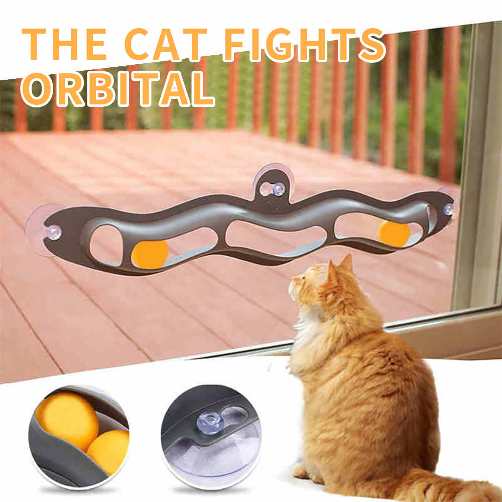 Track Toy Ball Pet Accessories Window Table Tennis Adsorption Glass Cat Toy Plastic Sucker New Funny Cat Educational Toys
