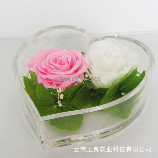Preserved Flower Wedding Gift Of Eternal Life Spent Real Flowers Never Fade Forever