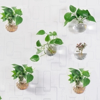 Set of 6 Glass Planters Wall Hanging Planters Hanging Air Plant Pots Flower Vase Air Plant Terrariums Hanging Plant Containers