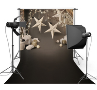 Vinyl cloth Photography Backdrops Christmas backdrop Photo background F 2212