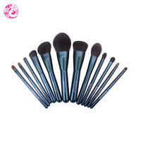 ENERGY Brand Professional Goat Hair 12 Pieces Makeup Brush Set Maquillage Brochas Maquillaje Pincel Ls0