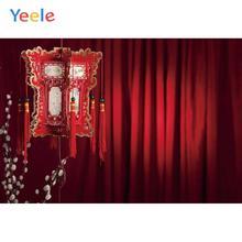 Yeele New Year Lantern Lamei flower Bulb Customized Photography Backdrops Personalized Photographic Backgrounds For Photo Studio