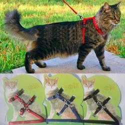 Поводок и поводок для кошек, хит продаж, 3 цвета, нейлоновые товары для животных, регулируемый поводок для питомцев, поводок для кошек, котено...