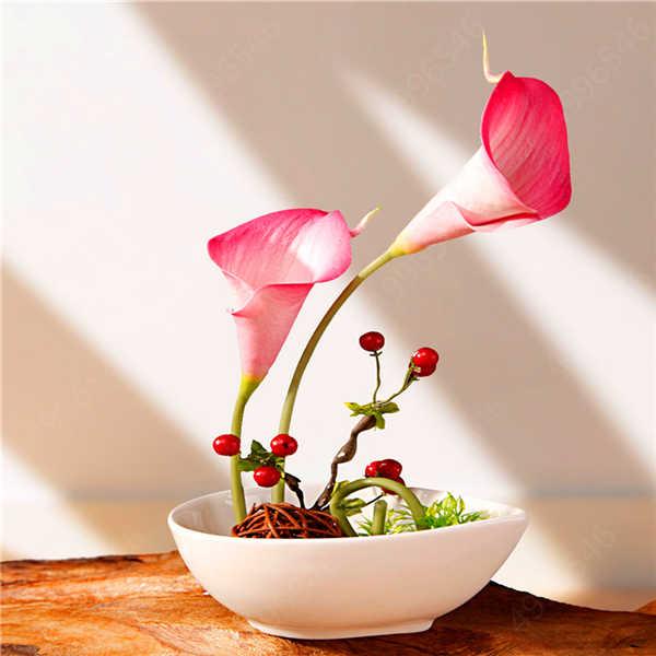 100 Pcs Calla Lily Bonsai,Rare Plants Flowers,Room Flowers Rhizome Zantedeschia Aethiopica, Bonsai Houseplants Home Garden Palnt