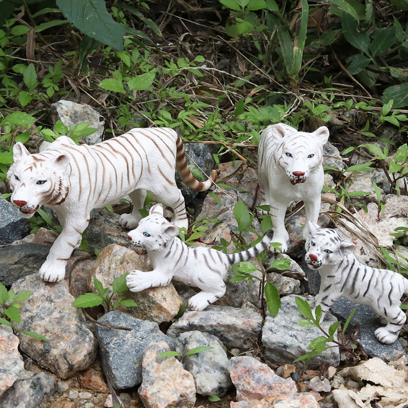 Oenux Lifelike Wild Animals White Tigers Action Figures Toys High Quality Solid PVC Tigers Decoration Model Toy For Kid Gift lps toy bag 25pcs pet shop animals cats puppy kids boy and girl action figures pvc lps toy birthday christmas gift 4 5cm