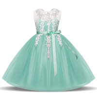 Baby Girl Clothes Flower Wedding Lace Prom Gown Tutu Party Dress For Girl Kids Fancy Ball