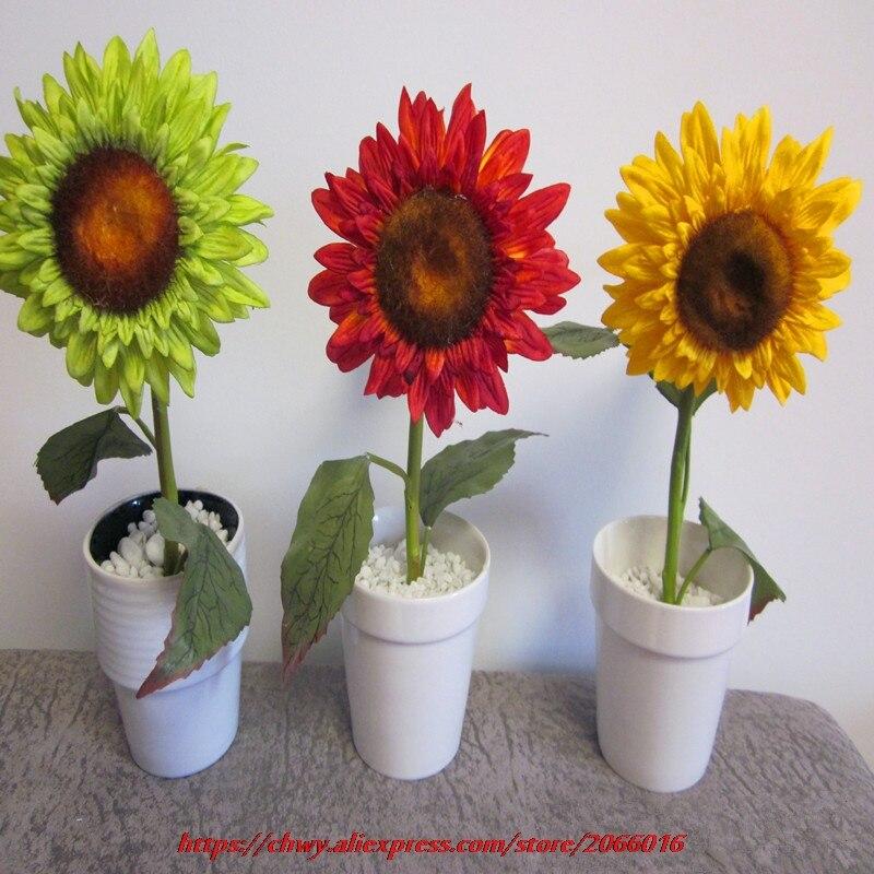 Popular rainbow sunflowers buy cheap rainbow sunflowers for Rainbow flower seeds