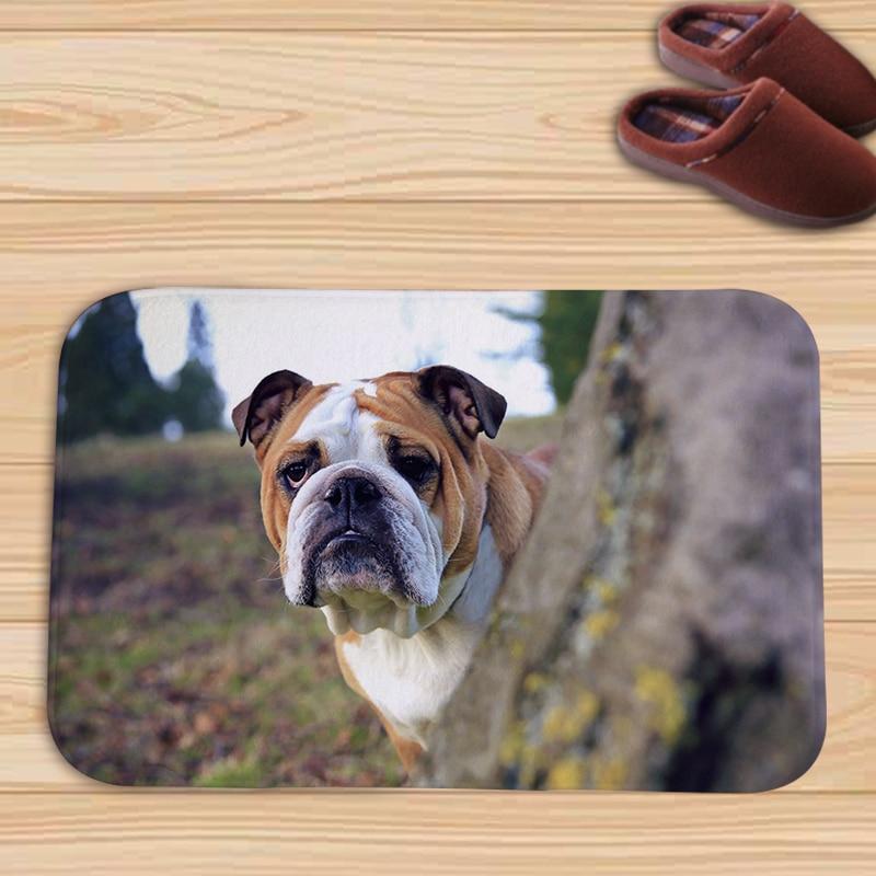 Dog Throw Up On Sisal Rug: Fahion Animals Bulldog Pug Dog Flannel Door Mat Floor Mat