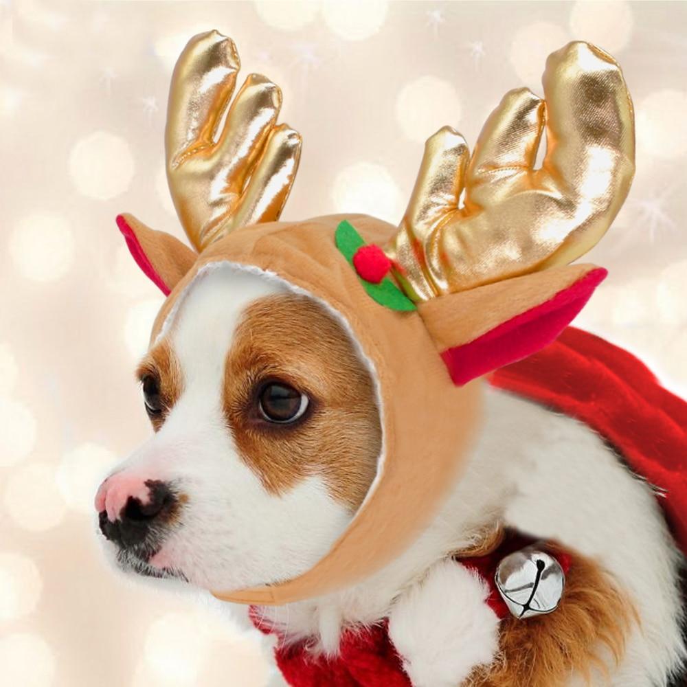 Hund Weihnachten Kostüm Hut Nette Rentier Hüte Haustier Katze ...