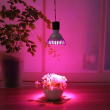 E27 5W/18W LED Plant Grow Light Full Spectrum Light Grow Lamp for Veg Flower Indoor Hydroponic Plant Growing and Flowering Lamp(China)