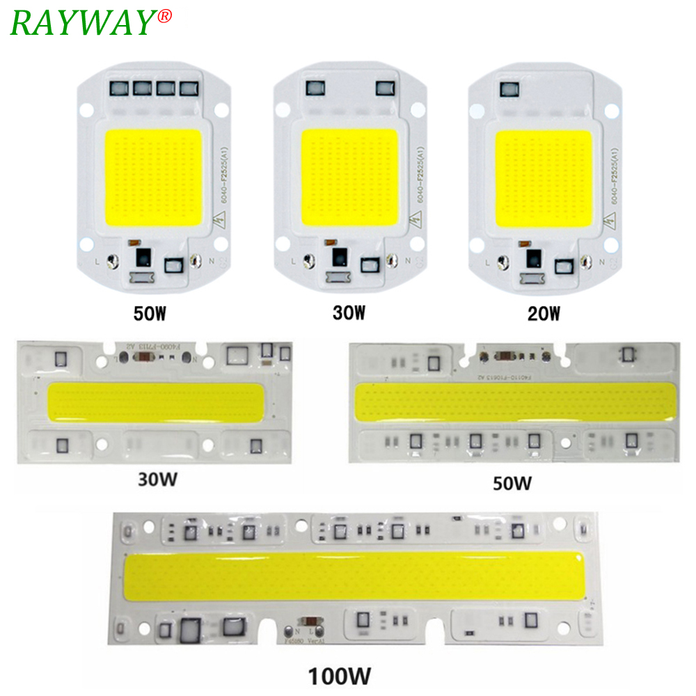 RAYWAY LED COB Chip Lamp Bulb High Power 20w 30w 50w 100w IP65 Smart IC Fit For DIY LED Flood Light Cold White Warm White