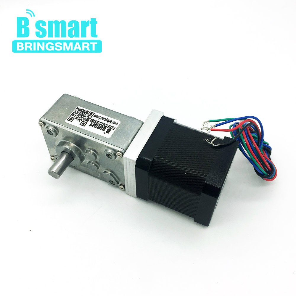 Bringsmart 42BY 12V Stepping Geared Motors 24V DC Worm Stepper Gear Motor Self-locking Mini Gearbox Worm Reduction Speed Reducer