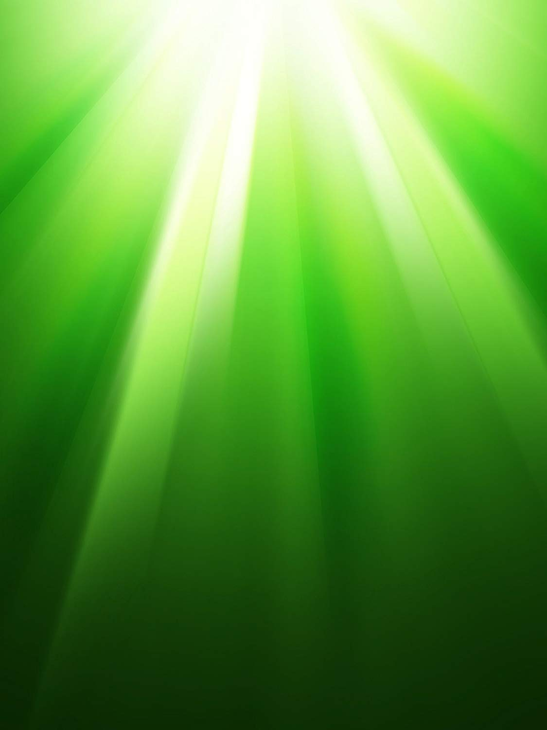 Image 4 - Green Spring Photography Backdrops Sunlight Photo Studio Backgound Wall Photography Background 5x7ft-in Photo Studio Accessories from Consumer Electronics