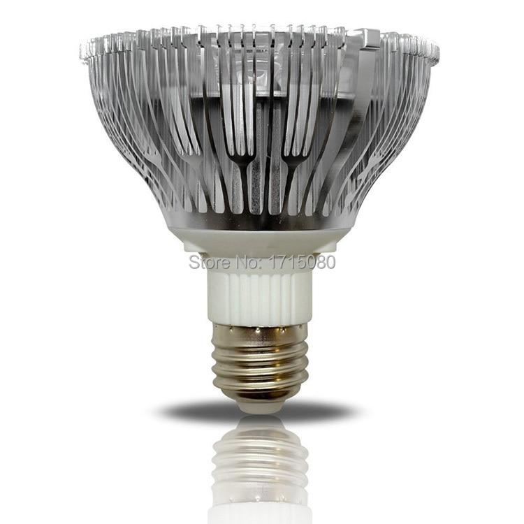 Natural White Light Bulbs