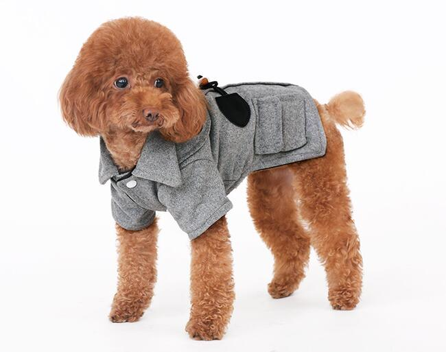 New autumn winte dogs cats cool jackets doggy fashion coats clothes puppy overcoat clothing pet dog cat hoodies costume 1pcs