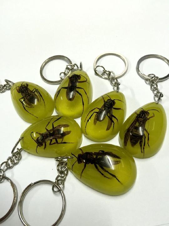 Desconto em tempo limitado frete grátis 50 pcs chaveiro real abelha specimen brilho no escuro gota chaveiro
