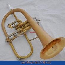 Профессиональный матовый золотой флюгелхорн Monel клапан Bb ключ флюгель рога чехол