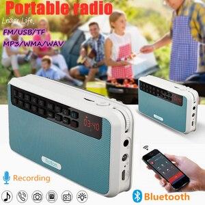 E500 HiFi Stereo FM Radio Blue