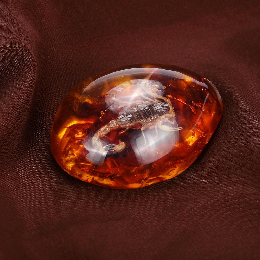 Насекомые янтарный кулон камень янтарные ювелирные изделия кулон насекомые в подвеске украшения ожерелье украшения для свитера ремесла подарок