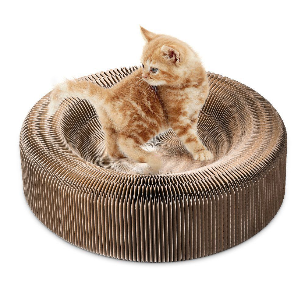 Portable Dog Cat Scratcher Lounge Collapsible Cardboard Scratcher Toy Cat Scratching Pad Cats Turbo Toys