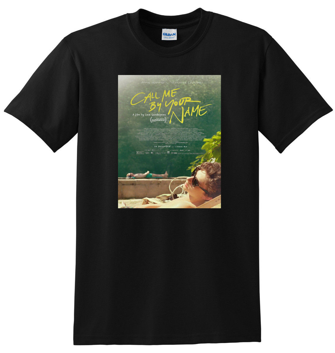 *NEW* CALL ME BY YOUR NAME T SHIRT movie poster tee SMALL MEDIUM LARGE or XL