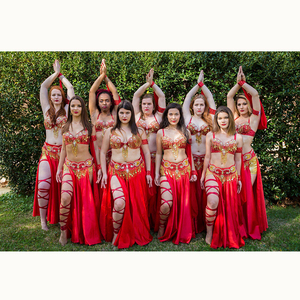 Image 5 - Hot design handmade beaded belly dance costume wear Bar+Belt 3piece/ set ,5 color ladies belly dance costumes women dancing wear