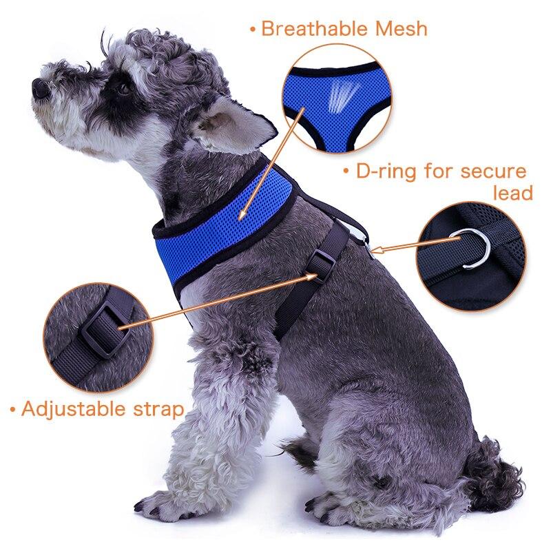 PAWZ közúti kutyahámú kutya macska kábelköteg póráz kisállat - Pet termékek