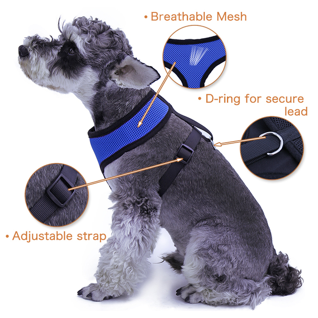 PAWZ Road Dog Harness Dog Cat Harness Leash Pet Product Fashion Mesh