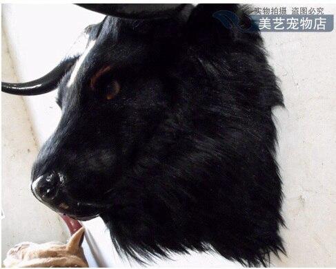 simulation-cute-black-yak-head-56x38x50cm-toy-model-polyethylenefurs-cattle-head-model-home-decoration-props-model-gift-d165