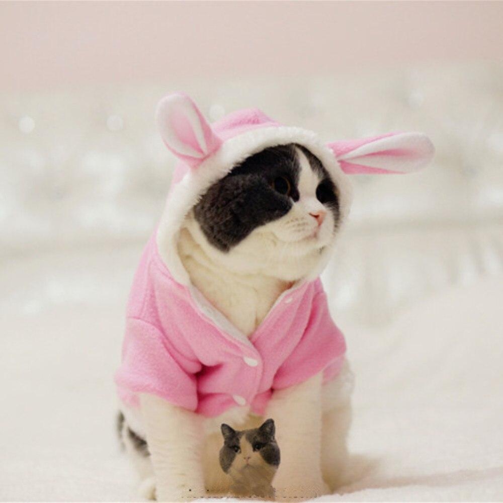 ₩Cómodo caliente engrosada gato conejo envío traje ropa a prueba de ...