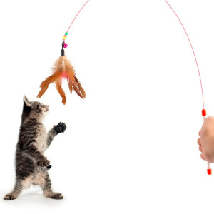 Pet cat toy Cute Design Steel Wire Feather Teaser Wand Plastic Toy for cats Color Multi Products For pet New Arrival(China)