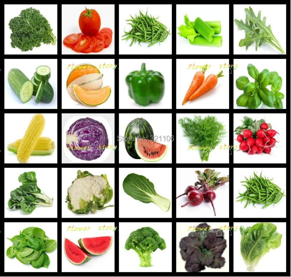Koop 30 soorten groenten en kruiden mix for Semillas de frutas y verduras