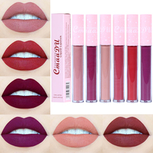 CmaaDu New 6 Color Optional Moisturizing Lipstick Matte Pink Tube Non-stick Cup Long lasting Lip Gloss High Quality TSLM2